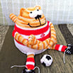 Схема для вязания крючком: Кот - Футболист